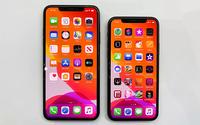 Mua iPhone 11 xách tay cần lưu ý gì