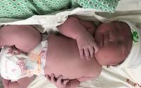 Vừa chào đời, bé trai Hà Nội to bằng trẻ 3 tháng