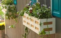 """Không gian sống đẹp """"chất ngất"""" nhờ những chiếc hộp trồng cây tự làm gắn cửa sổ"""