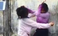 Học sinh cấp 2 cổ vũ, quay clip bạn học đánh nhau, trường nói 'chưa ghi nhận'