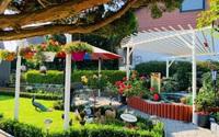 """Vườn hoa 500m² đẹp như cổ tích được tạo bởi tình yêu thiên nhiên của cặp vợ chồng dành cả """"thanh xuân"""" để trồng cây"""