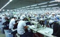 Trung tâm Dịch vụ việc làm Bình Dương triển khai nhiều giải pháp kết nối việc làm cho người lao động