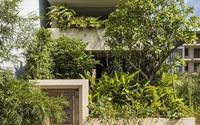 Ngôi nhà Sài Gòn bị gia chủ phủ kín cây xanh từ sân lên nóc