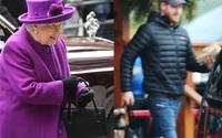 Phản ứng của Nữ hoàng Anh và Hoàng tử Harry thay đổi như thế nào sau quyết định cấm Meghan dùng thương hiệu hoàng gia?