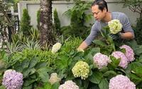 Người đàn ông đang sở hữu góc vườn đẹp hút hồn ở Hà Nội chia sẻ kinh nghiệm trồng cây để có khu vườn đẹp như châu Âu