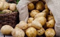 Có khoai tây trong nhà mà bạn không biết áp dụng nhưng mẹo cực hay này thì thật là đáng tiếc