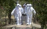 Hơn 507.400 người chết vì COVID-19 trên toàn cầu