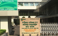 Một Phó Chủ tịch UBND thành phố Hồ Chí Minh bị khởi tố
