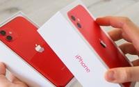Cửa hàng liên tục giảm giá iPhone 11