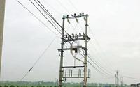 Hải Phòng: Phát hiện thi thể nam giới vắt trên cột điện
