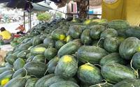 Nông sản Việt kêu cứu vì virus corona
