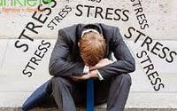 Ảnh hưởng của stress đến tình dục