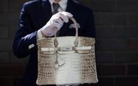 Làm giả túi Hermes thu hơn 2 triệu euro