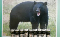 Bục dạ dày, vỡ mạch máu vì uống mật gấu tráng dương