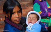 Luật dân cư Mexico (6)
