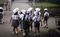 Bài học kinh nghiệm từ chính sách và chương trình dân số ở Nhật Bản