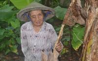 Đắng lòng cụ bà cô độc mù mắt lay lắt trong mái tranh nghèo