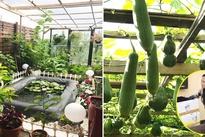 Mẹ Việt ở Đức san rừng trồng đủ loại rau Việt