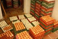Buôn trứng vịt, lãi 15 triệu đồng/tháng
