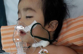 Sự sống mong manh của bé 2 tuổi cùng lúc mắc nhiều bệnh nặng
