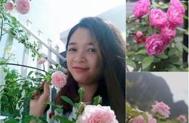 Ban công rực rỡ hoa hồng ai ngắm cũng