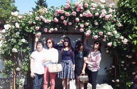 """Ai cũng ước được đến thăm khu vườn 250m² nở đầy hoa hồng """"khủng"""" của mẹ Việt ở Séc"""