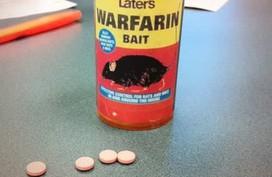 Hà Nội: Cụ ông 91 tuổi nuốt 20 viên thuốc diệt chuột vì tưởng nhầm là... kẹo