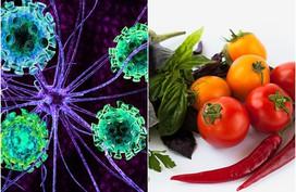 9 tác dụng phụ khi ăn quá nhiều cà chua, điều số 8 nguy hiểm nhất có thể mất mạng