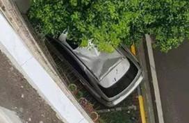 Anh nông dân rơi từ tầng 6 làm nát xe sang