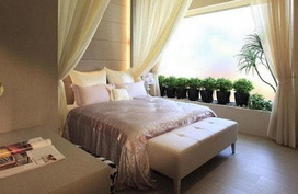 Những cây cảnh nào nên và không nên đặt trong phòng ngủ?