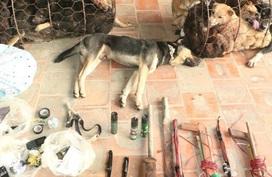 Nghệ An: Dân làng vây đánh chết 1 người nghi trộm chó