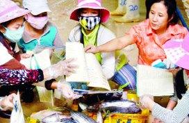Đề án 52 tại Phú Tân, Cà Mau: Nâng cao chất lượng truyền thông