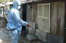 Tăng cường phòng chống bệnh sốt xuất huyết và tay chân miệng.
