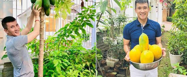 Vợ chồng Công Vinh - Thủy Tiên tươi rói khoe những lần hái quả sai trĩu trong vườn nhà
