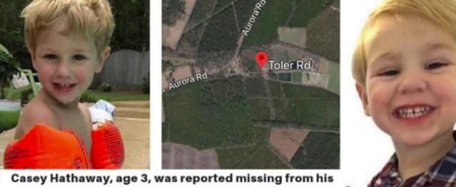 Cậu bé 3 tuổi mất tích trong rừng được gấu chăm sóc
