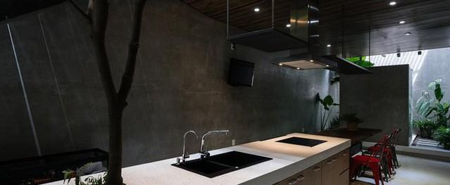 Ngôi nhà ấn tượng với vườn mọc ngay trong bếp