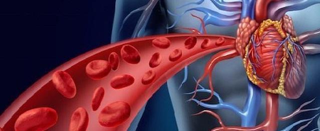 Nghiên cứu mới từ Harvard tiết lộ chỉ với 5 phút buổi sáng tại nhà, chúng ta có thể đẩy lùi nguy cơ bệnh tim, đột quỵ thậm chí là tiểu đường