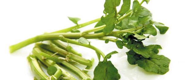Tác dụng chữa bệnh của rau cải xoong