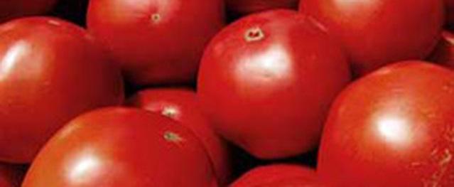 Ăn cà chua giúp giảm nguy cơ trầm cảm