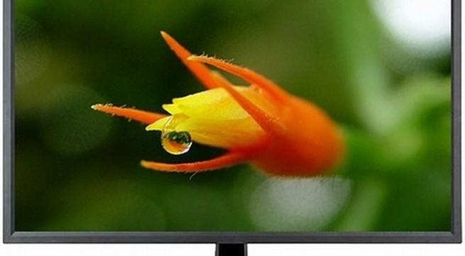 Nhiều màn hình 4K siêu nét đại hạ giá