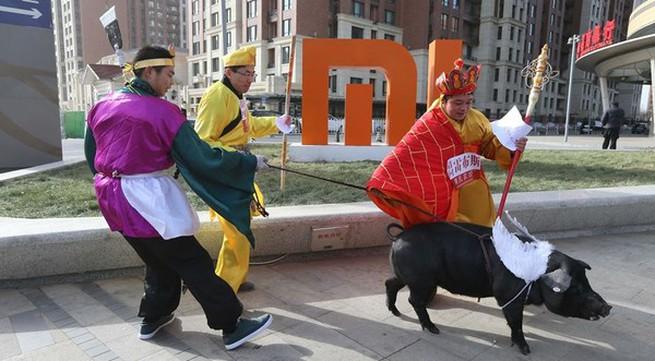 """""""Thầy trò Đường Tăng"""" dắt lợn đi dạo trên đường phố"""