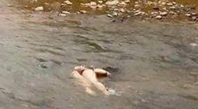 Phát hiện thi thể phụ nữ chỉ mặc nội y, bị trói tay dưới suối