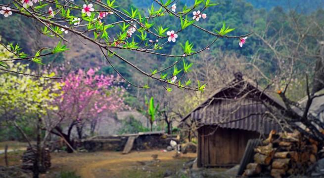 Ngỡ ngàng vẻ đẹp mùa xuân Tây Bắc qua góc ảnh của chàng trai Hà thành