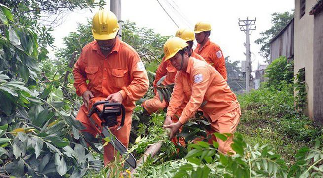 Giảm thiểu 81/300 trường hợp vi phạm hành lang lưới điện ở Hà Nội