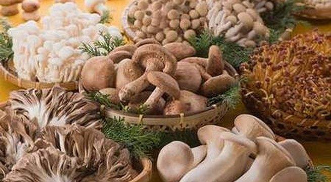 Cách ăn và chế biến nấm tốt cho sức khỏe