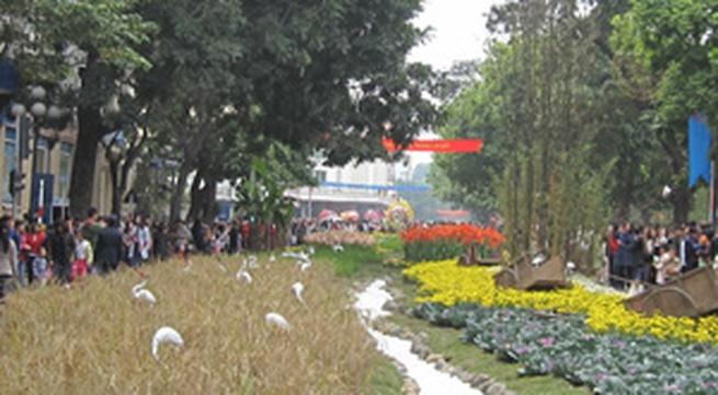 Lễ hội hoa Hà Nội 2010: Lo hoa, quên... khách?