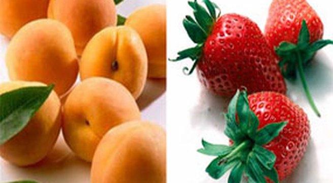 Các loại trái cây mát bổ tốt cho sức khỏe