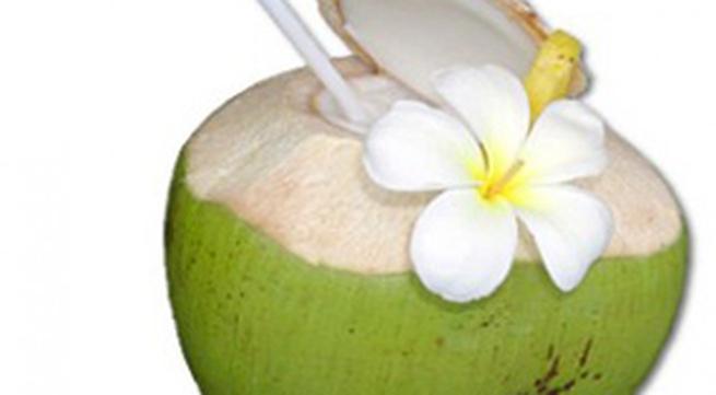 Đầu thai kỳ, không nên uống nước dừa