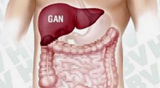 Những lo lắng về bệnh viêm gan B
