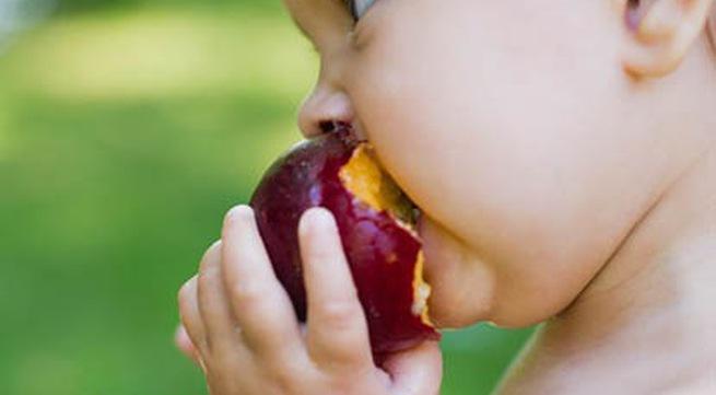 9 siêu thực phẩm cực tốt cho sự phát triển của trẻ